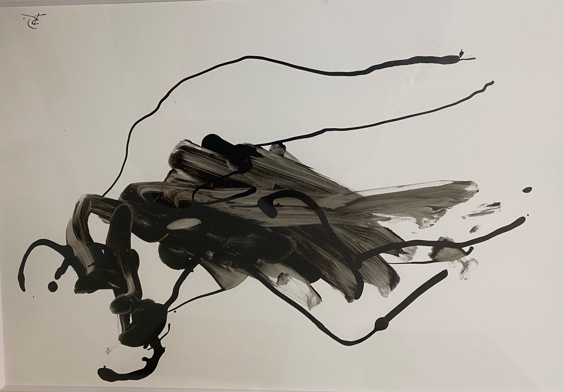 Doganova_EROT-INK 8, Originaltuschzeichnungen, gerahmt, signiert, 20 x 30 cm