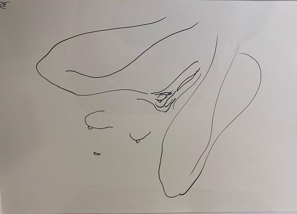 Doganova_EROT-INK 7, Originaltuschzeichnungen, gerahmt, signiert, 20 x 30 cm
